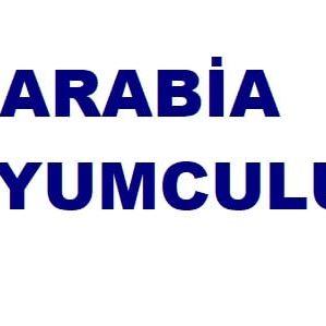 Al Arabia Kuyumculuk